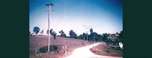 Marshall Lane, Kenmore c1950s