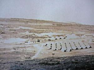 The camp at Tel-el Kebir (Courtesy AWM)