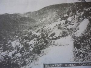 Shrapnel Gully 1915. Image Courtesy Australian War Memorial
